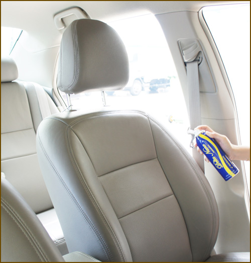delta nano automotive spray can for car interior hygiene. Black Bedroom Furniture Sets. Home Design Ideas